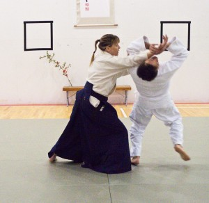 Spring 2013 Seminar with Suzuki Sensei